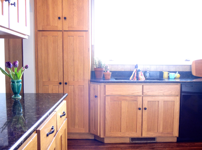 picture kitchen cabinets