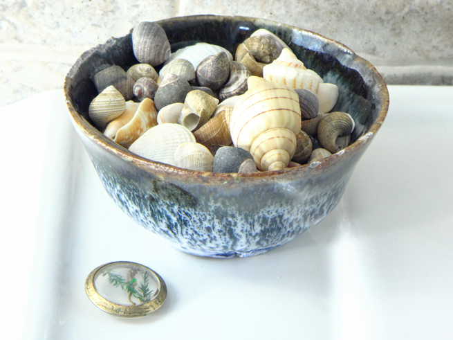 picture bowl of shells